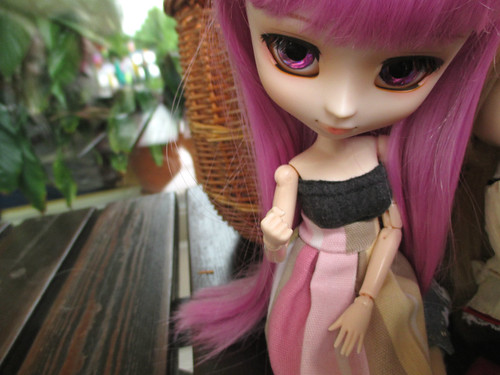 Doll meeting