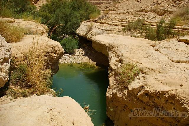 view 0004 Nahal Arugot, Dead Sea, Israel