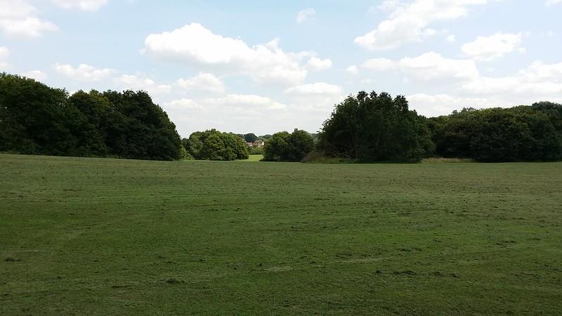 Big grassy field #LondonLOOP #sh