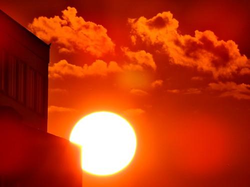 city brussels orange june juni juin europa europe cityscape belgium belgique belgie capital eu bruxelles ciudad experience stadt ausflug giugno junio ville stad arancione ue città belgien belgio 2014 naranjo junho relazioniinternazionali rilm universitytrip gitadiclasse europeanheadquarters june2014 giugno2014