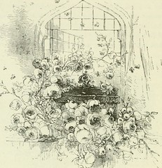 "Image from page 225 of ""Midsummer Eve : a fairy tale of loving and being loved"" (1870)"