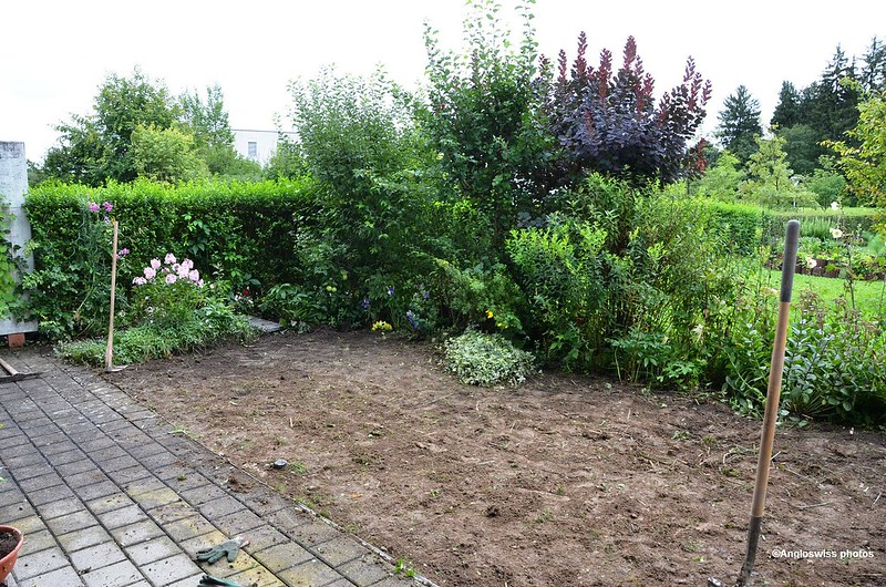 New Back Garden