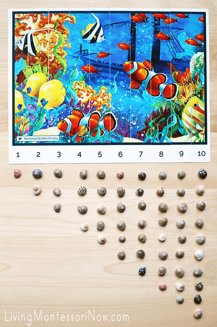 Ocean-Scene Number-Sequence Puzzle and Seashell Counting Activity
