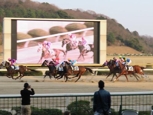 佐賀競馬場の最終レース