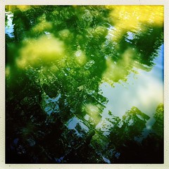 #reflection #water #trees #pond #park #historical #planotexas #ripples