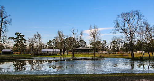 texas deckerprairie montgomerycounty tomball farm pond barns reflections trees clouds fence water