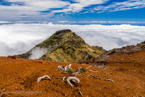 orange mountain portugal clouds peak deadtree madeira picoruivo canonefs1755mmf28isusm canoneos60d jonbagge