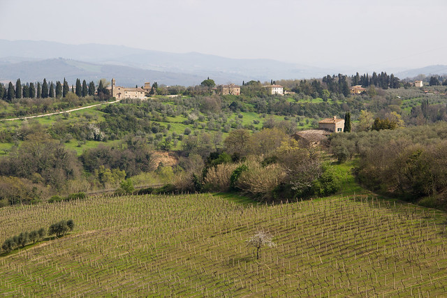 The Tuscan Countryside