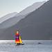 Summer Sailing by **El-Len**