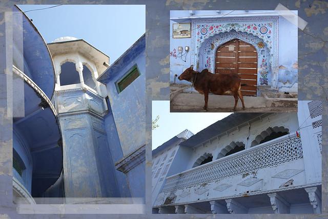 PAF-Pushkar-collage-w