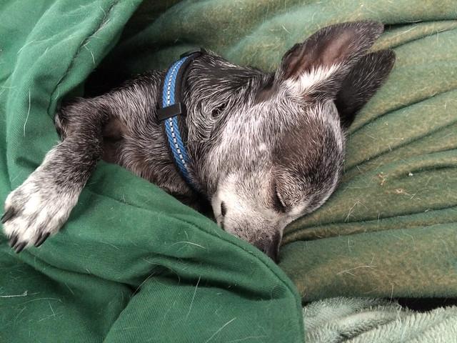 sleeping_dogs-20140510-101