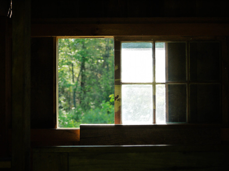 East-facing window