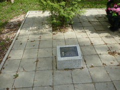 Photo of Black plaque number 30875
