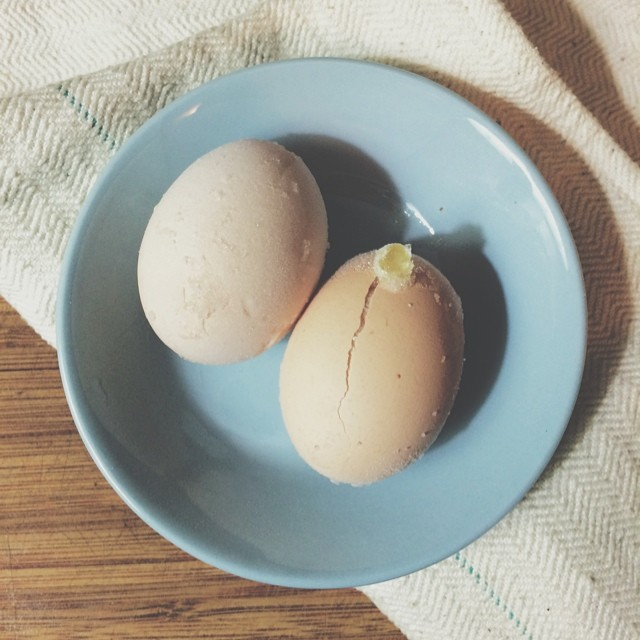 Using The Yolks After Making An Engel Food Cake