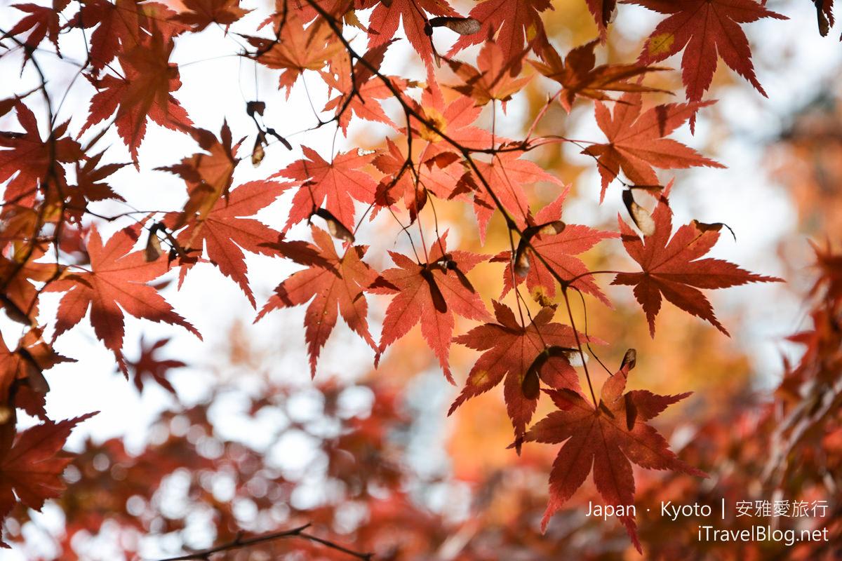 京都 东福寺37