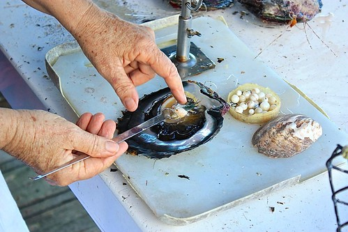 extracting pearl from oyster Tahaa