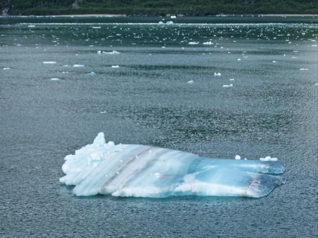 Calved Iceberg 20140619