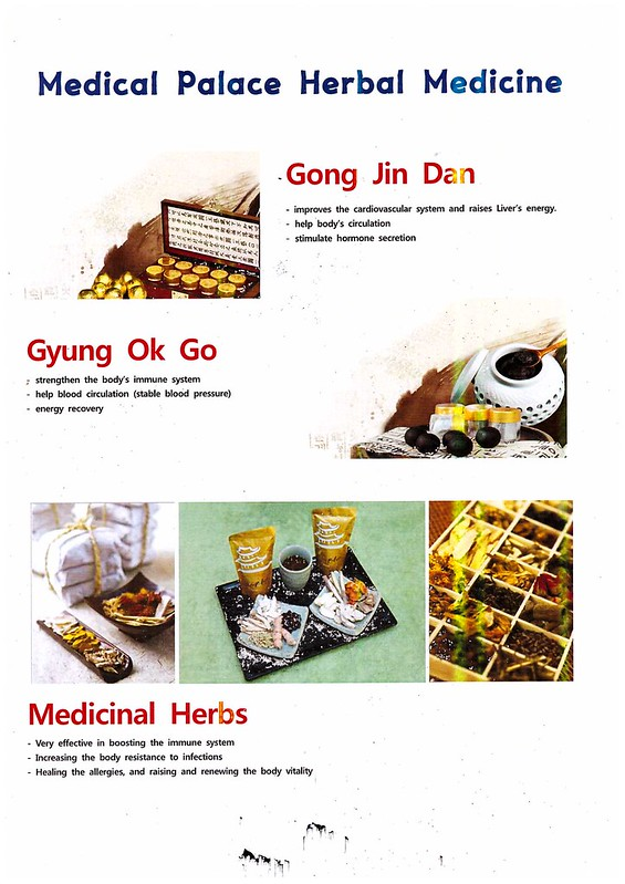 oriental treatment - medical palace korea6