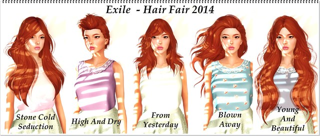 Hair Fair 2014 - Exile