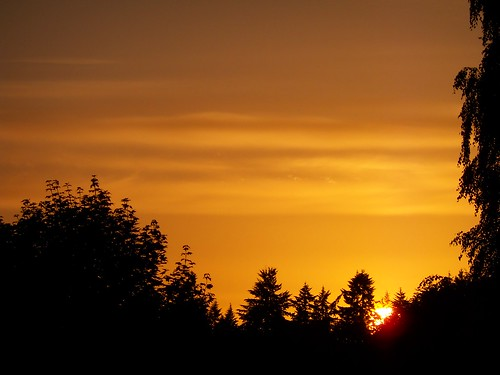 sunset sky sun nature weather silhouette sundown goldensunset vancouverwa beautifulsky beautifulsunset beautifulevening shadesoforange sunsetsilhouettes vancouverwasunset