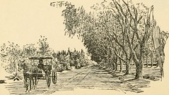 """Image from page 107 of """"To California and back;"""" (1897)"""