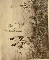 "Image from page 260 of ""Horn measurements and weights of the great game of the world: being a record for the use of sportsmen and naturalists"" (1892)"