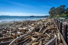 _WCB4256 Seacliff State Beach- Aptos CA