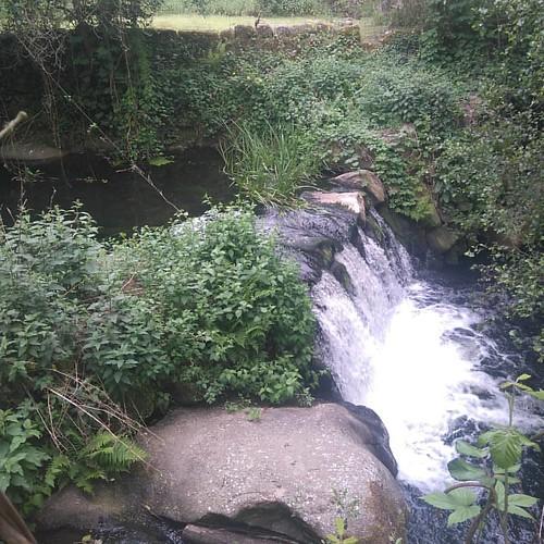 #caminhada #rio #Seia  Já não estou perdido, é só seguir o leito do Rio...