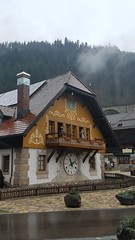 Black Forest Stop, Germany