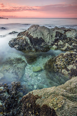 Talland Bay Clarity