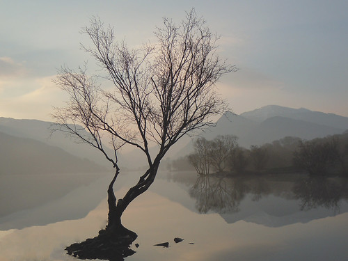 Misty sunrise on Padarn.