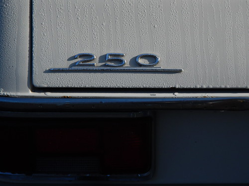 Mercedes-Benz 250. Morning dew trunk logo.