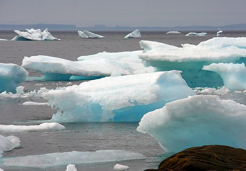 ocean blue sea white seascape canada ice newfoundland landscape scenery scenic atlantic iceberg nfld eastcoast atlanticcanada avalonpeninsula oldperlican