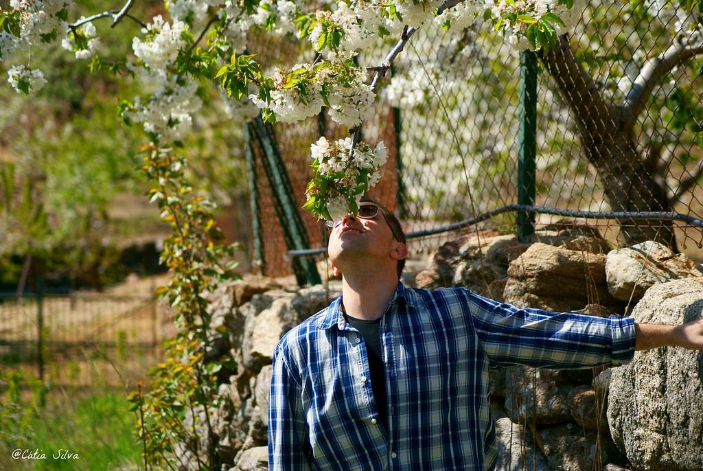 Extremadura-Valle del Jerte-Cerezo en Flor (11)