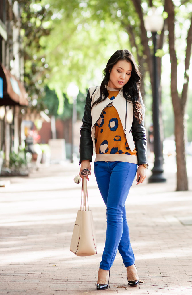 cute & little blog | petite fashion | sheinside contrast leather sleeves moto jacket, phillip lim leopard sweater, cobalt blue pants | spring layers outfit