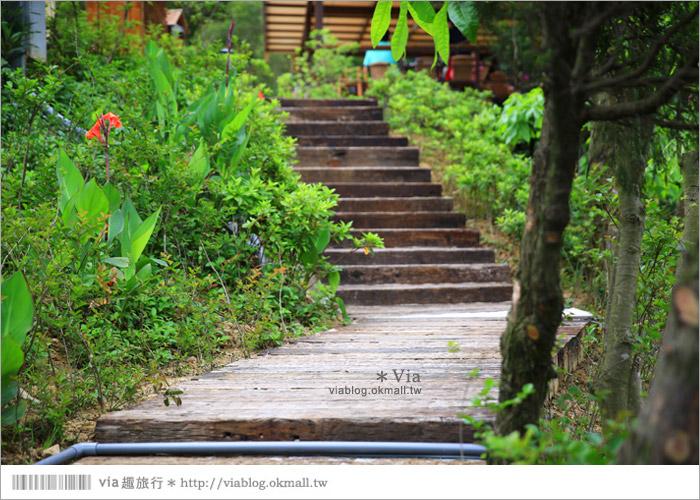 【新竹景點推薦】森林鳥花園~親子旅遊的好去處!在森林裡鳥兒與孩子們的樂園26