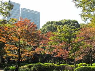 Hibuya Garden