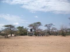 Rest in the savannah