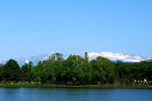 中央植物園より Mountain of May