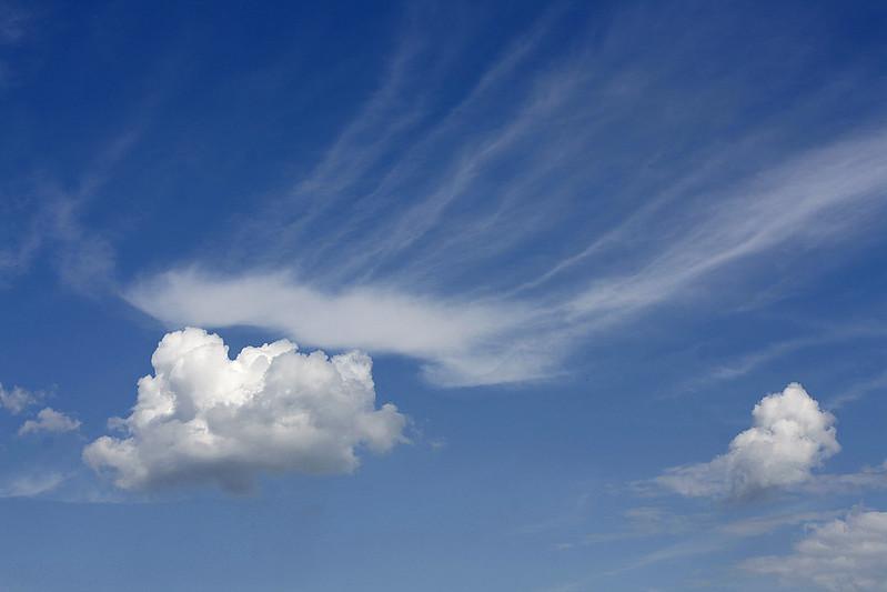 """140 / 365 """"cloud"""""""