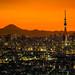 Tokyo Skyline by Sandro Bisaro