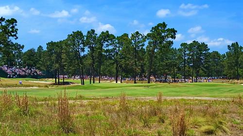 usa sports golf major northcarolina usga sandhills pinehurst usopen progolf 2014usopen