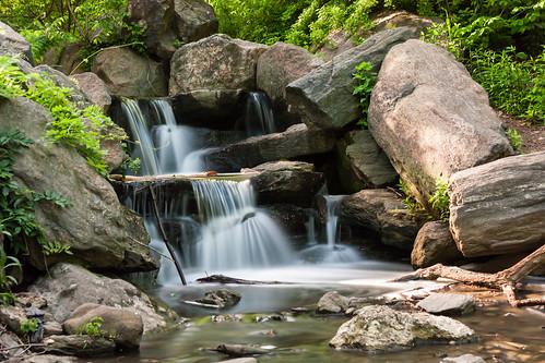 park nyc newyorkcity longexposure trees newyork green nature water leaves canon waterfall rocks hiking walk centralpark central falls le