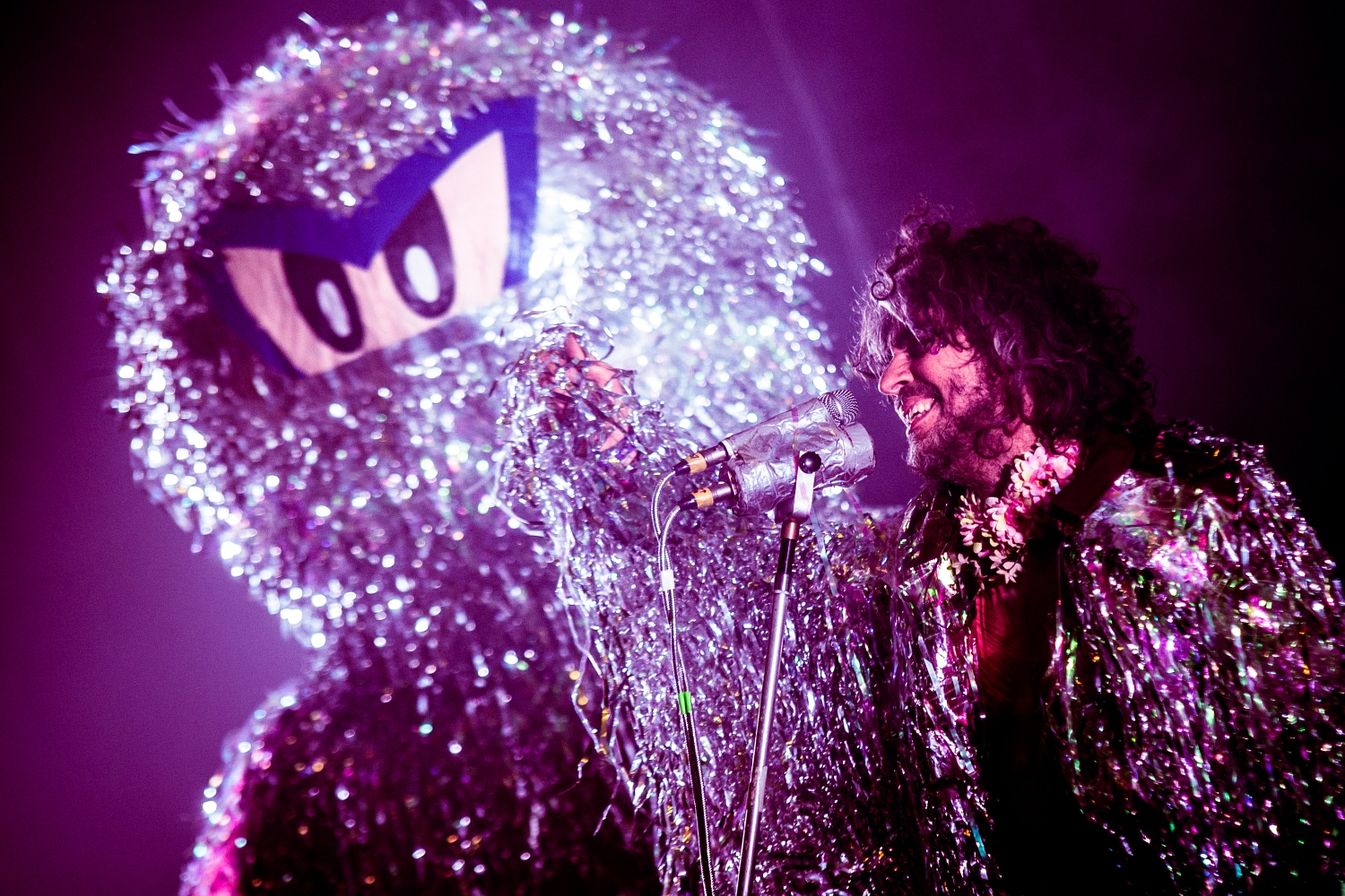 The Flaming Lips 73
