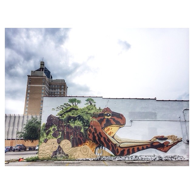 The murals around downtown Jacksonville are pretty amazing!
