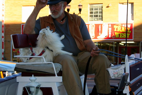 Carriage Driver with Pup
