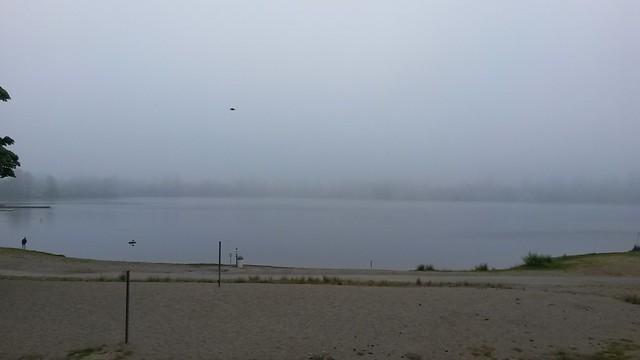 Yay fog!