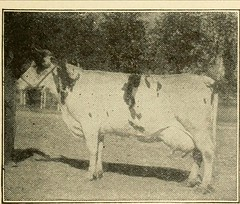 """Image from page 80 of """"Hale's history of agriculture by dates. A simple record of historical events and victories of peaceful industries"""" (1915)"""