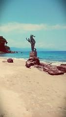 #caballitodemar en #Puertovallarta #hermoso #bonito #playa #agua #cristalina