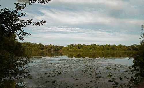 trees summer sky lake water clouds reflections river oakland newjersey pond nikon summertime ramaporiver d3100 smack53